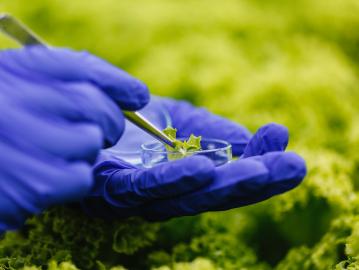 empresa-de-soluciones-ambientales